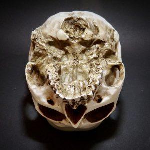 Skull-Planter