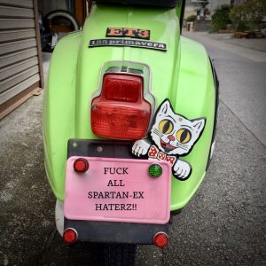 CAT-LICENSE TOPPER